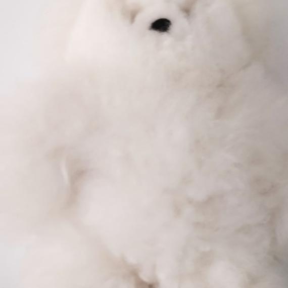 Baby Alpaca Fur Teddy Medium