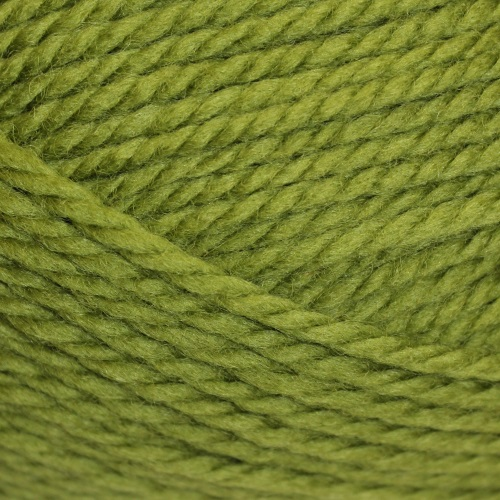 Heirloom Merino Magic Chunky 14 Ply 125g - Guava