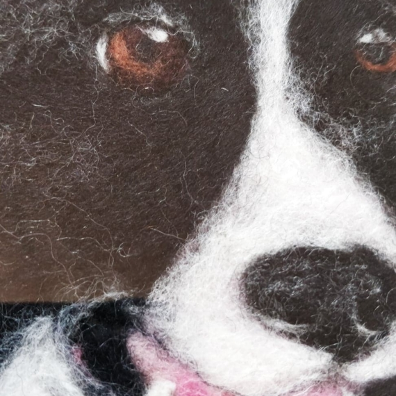Needle Felted Wool Picture - Border Collie
