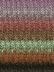 Noro Transitions 100g - Spring