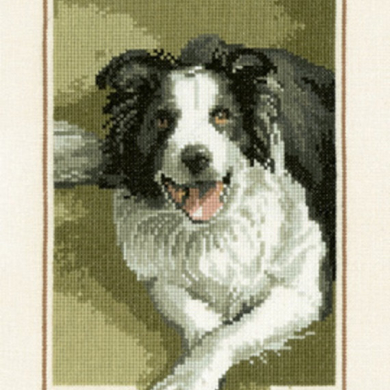 Cross Stitch Chart - Border Collie