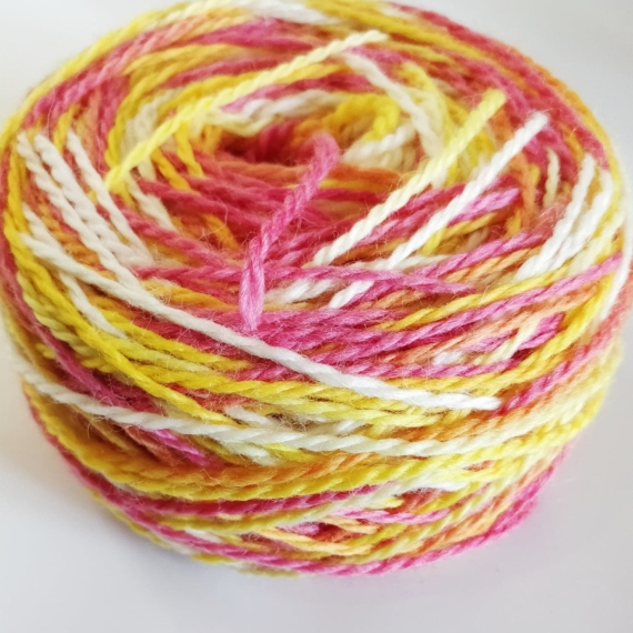 Hand Dyed Corriedale 8 Ply - Tropical
