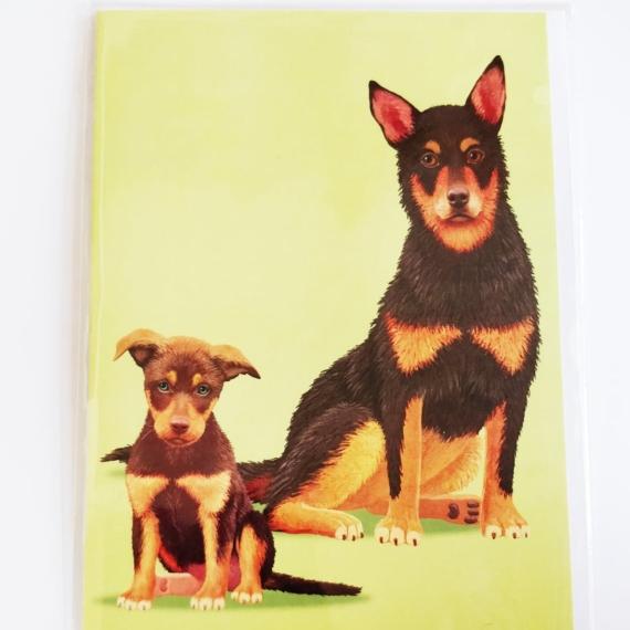 Card - Australian Kelpie