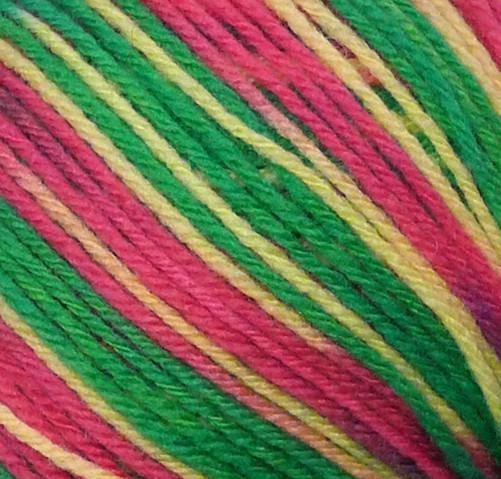 Fibra Natura Lima Colours 8 Ply 100g - 42141